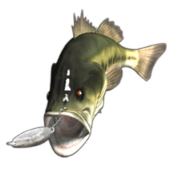 Let's go lure fishing - Black bass -