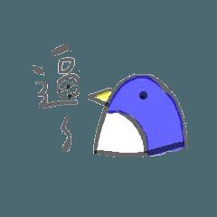 Sister Penguin's Daily