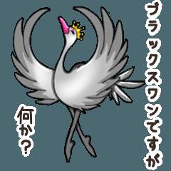 Namua Morimoto & Black Swan