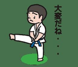 One frame with a karate friend sticker #12737961