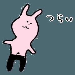 5 tatami mats and a half rabbit