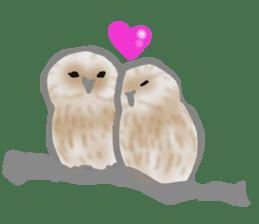 Healing of the OWL sticker #12762178