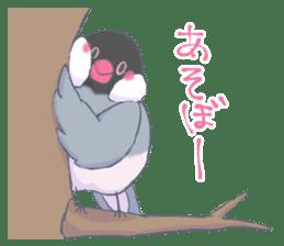 BirdParty sticker #12774851
