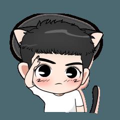 Kitten Je