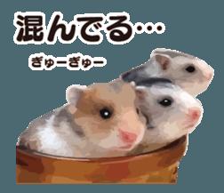I like hamsters 3 sticker #12789355