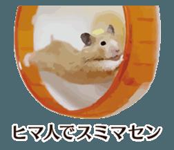 I like hamsters 3 sticker #12789357