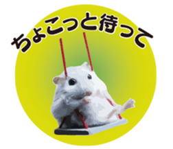 I like hamsters 3 sticker #12789370