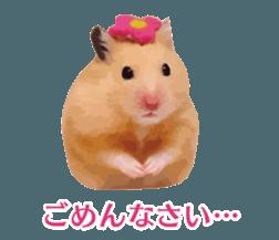I like hamsters 3 sticker #12789379
