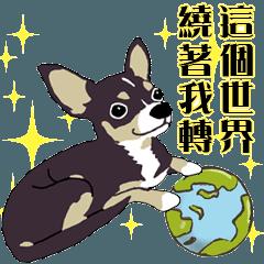 A Lovely Dog LOVE YOU-2