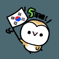 Mamefuku of barn owl5 Korean ver.