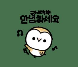 Mamefuku of barn owl5 Korean ver. sticker #12846646