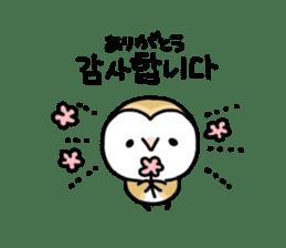Mamefuku of barn owl5 Korean ver. sticker #12846647