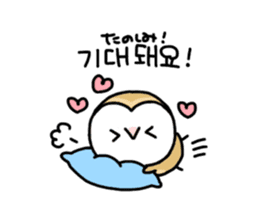 Mamefuku of barn owl5 Korean ver. sticker #12846659