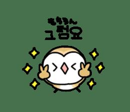 Mamefuku of barn owl5 Korean ver. sticker #12846660