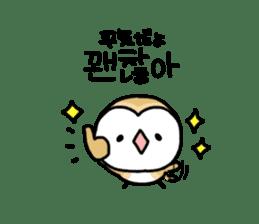 Mamefuku of barn owl5 Korean ver. sticker #12846665
