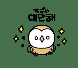 Mamefuku of barn owl5 Korean ver. sticker #12846666