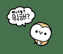 Mamefuku of barn owl5 Korean ver. sticker #12846670