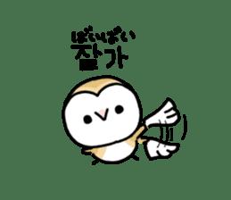 Mamefuku of barn owl5 Korean ver. sticker #12846685