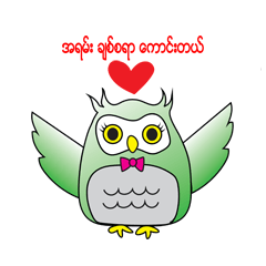 Little Owl of Myanmar