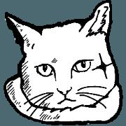 สติ๊กเกอร์ไลน์ Great black-and-white cats