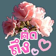 สติ๊กเกอร์ไลน์ สนทนาภาษาดอกไม้ (เจ้าความรัก)