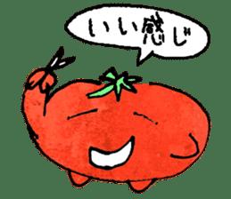 TALKING TOMATO sticker #12937660