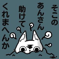 KURE USA(Crazy rabbit)[Kansai accent] 1