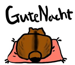 Cat speaking German sticker #12960186