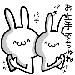 Twins rabbit