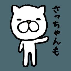 Sachan cat