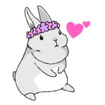 The cute rabbit girl who is in love sticker #13014586