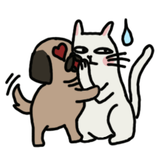 pug and cat's love story