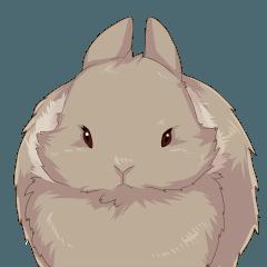 Rabbit sticker mof