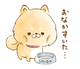 POME SHIBA sticker #13099237
