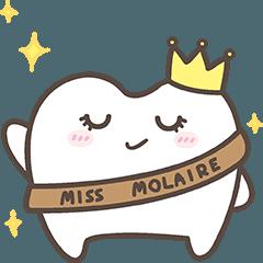 The cutie molar