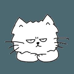 MOP cat