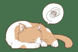 Cat full stickers for cat lover 2 sticker #13147512