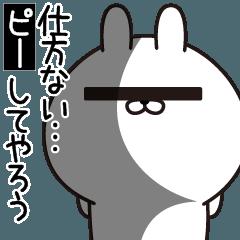 P Rabbit3