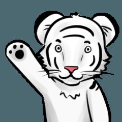 Smiling white tiger (English version)