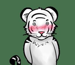 Smiling white tiger (English version) sticker #13286841