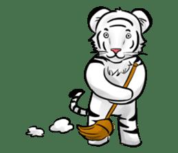 Smiling white tiger (English version) sticker #13286842