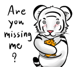 Smiling white tiger (English version) sticker #13286844