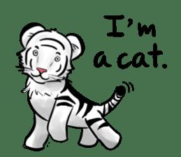 Smiling white tiger (English version) sticker #13286848
