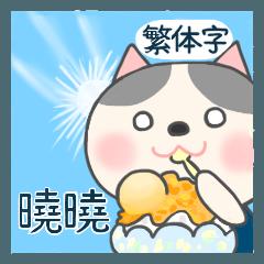 For Xiao Xiao'S Sticker
