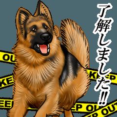 Mr. shepherd 3 Police dog Real style.