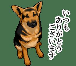 Mr. shepherd 3 Police dog Real style. sticker #13346814