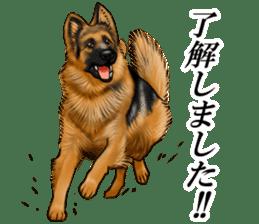 Mr. shepherd 3 Police dog Real style. sticker #13346815