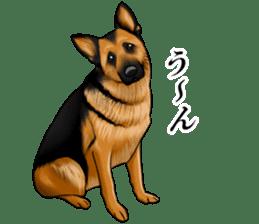 Mr. shepherd 3 Police dog Real style. sticker #13346816