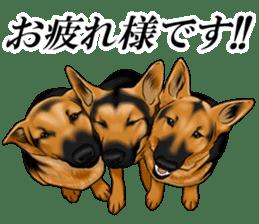 Mr. shepherd 3 Police dog Real style. sticker #13346819