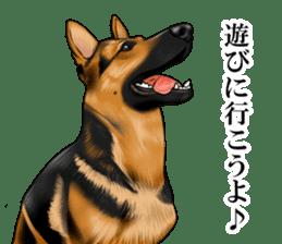 Mr. shepherd 3 Police dog Real style. sticker #13346822